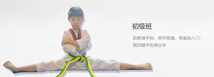 包头跆拳道培训